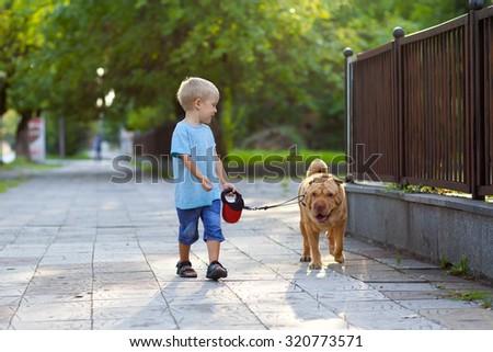 Children (little boy) walks the dog