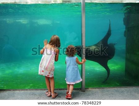 Children near zoo aquarium