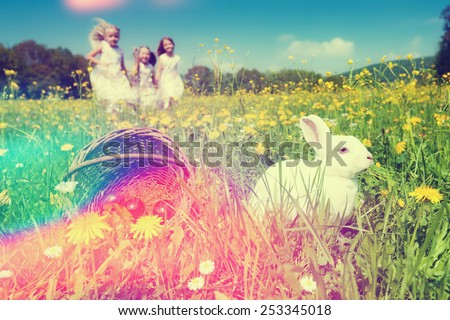 Children on an Easter Egg hunt on a meadow in spring, in the foreground the Easter bunny is waiting, filtered image