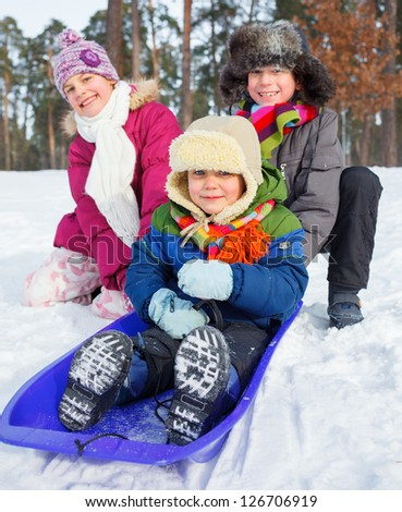 Children on sleds in snow forest. Vertical view.