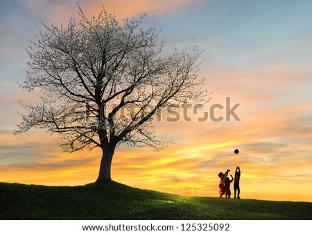 Children playing on beautiful meadow with ball around the tree