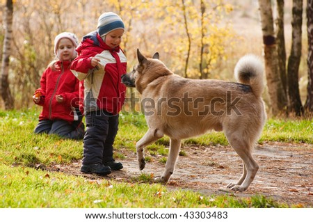 Children playing with dog in autumn forest
