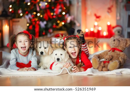 Stock Photo Children playing with puppies under Christmas tree