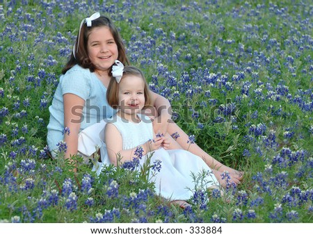 bluebonnet clip art. in luebonnet flower field