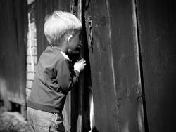 Children's curiosity