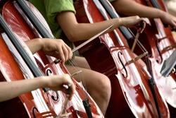 Children's fingers drawing bows across the fingerboards of shiny cellos during outdoor performance