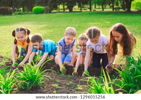 Children's hands planting young tree on black soil together as the world's concept of rescue #1296015256