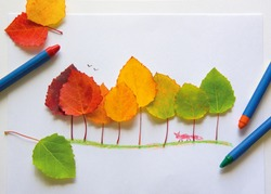 Children's picture made from autumn leaves with pencil drawing on paper