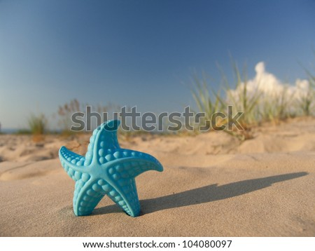 Children's toy in the form of a starfish on sand against the blue sky not in focus.