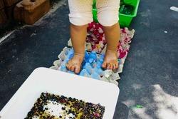 Children walk on seeds to practice balance in kindergarten, sensory training.