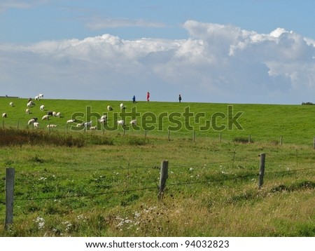 Children walking on a North Sea dike, approaching sheep under threatening storm clouds