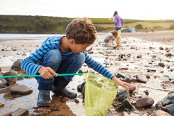 Children With Pet Dog Looking In Rockpools On Winter Beach Vacation