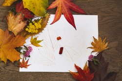 Childrens leaf rubbing with crayons and decorated with fall leaves; Autumn leaves and tansy surround kids leaf rubbing
