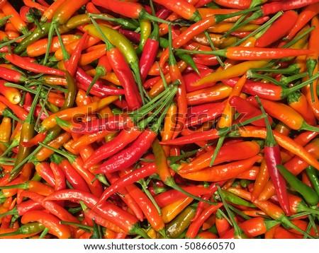 Chili pepper. Chili pepper pattern. Chili pepper texture. Red and orange chili pepper. Small chili pepper. #508660570