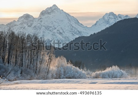 chilkat river and mountains in...