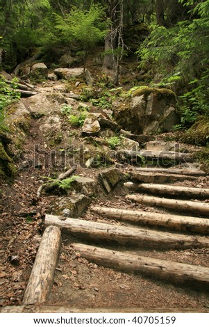Chilkoot Trail, a historical trail from the gold mining era, Skagway, Alaska, USA