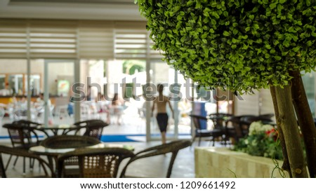 Chilling out cafe at a hotel  with green trees, tabels and chairs.empty cafe near the beach  in the tropics Resort. high category hotel interior concept