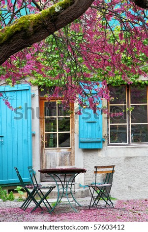 chilly sitting area with table and chairs in an old house garden under a tree with violet flowers covering the ground around the table