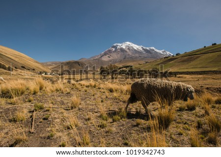 Chimborazo is a currently inactive stratovolcano in the Cordillera Occidental range of the Andes. Its last known eruption is believed to have occurred around 550 C.E.. With a peak elevation of 6,263 m