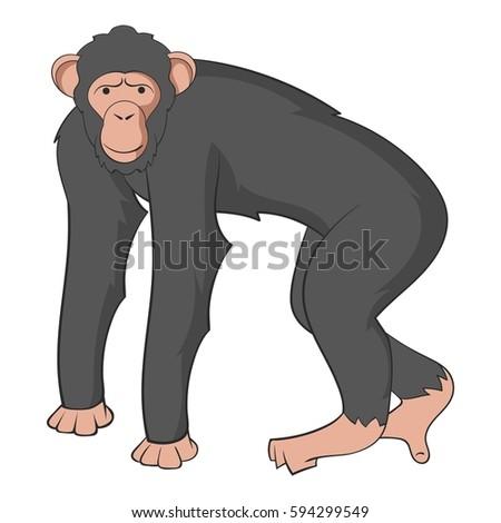 Chimpanzee icon. Cartoon illustration of chimpanzee  icon for web