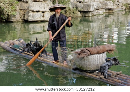 CHINA - JUNE 22: Chinese man fishing with cormorant birds, Yangshuo, Guangxi region, China, 21 June 2008. This is a traditional fishing method in which fishermen use trained cormorants to fish