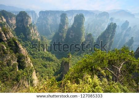 China nature landscape ( Zhangjiajie National Park )