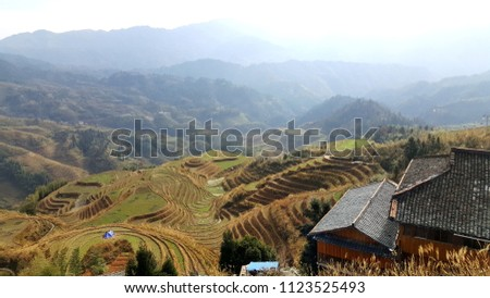 China Rice field #1123525493