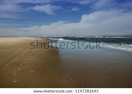 Chincoteague is a town on Chincoteague Island in Accomack County, Virginia, United States. The population was 2,941 at the 2010 census. The town is known for the Chincoteague Ponies.