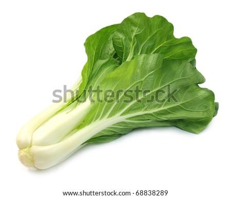 Chinese cabbage ストックフォト ©