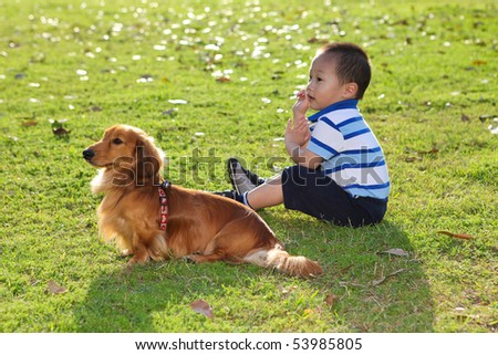 chinese child with a dog in the park watching