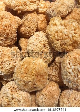 chinese cuisine dried mushrooms, hainan island