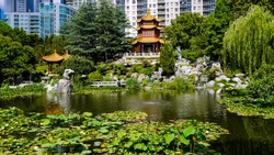 Chinese gardens in front of skyscrapers