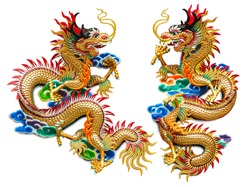 Chinese golden dragon statue for decoration in the temple isolated on white background with clipping path