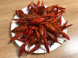 Chinese Lobster Food. The spicy crayfish dish. (Malalongxia, MaraLongsha). Chinese cuisine.