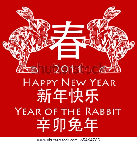 Chinese New Year 2011,Zodiac Predictions,Chinese New Year Animals 2011