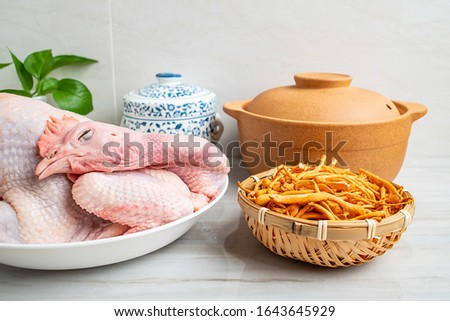 Chinese nutritious health soup ingredients, fresh hen and cordyceps