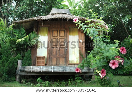 Chinese Rose Hut Single - stock photo