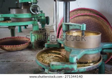 Chinese tea plantation at work