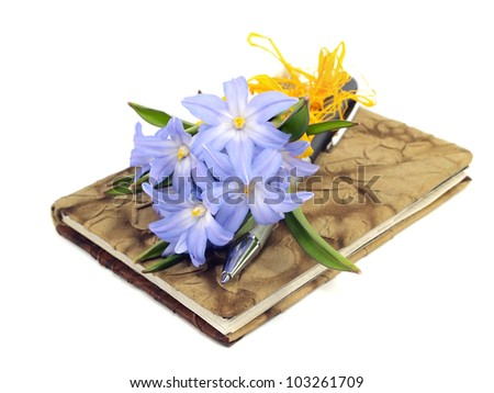 Chionodoxa Luciliae, pen and notebook on a white background