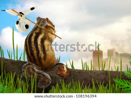 chipmunk emigrant, environment and ecology concept