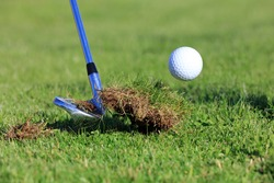 Chipping Golf Ball Out Of The Rough Grass With Divot.