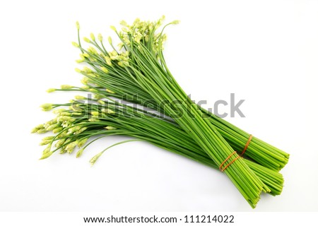 Chives flower on white background