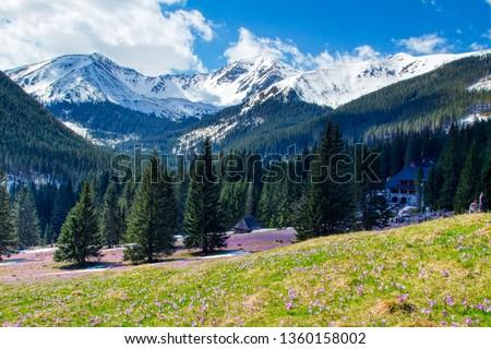 Chocholowska Valley in The High Tatras Mountains (Vysoké Tatry, Tatry Wysokie, Magas-Tátra), are a mountain range along the border of Slovakia and southern Poland in the Lesser Poland Voivodeship. #1360158002