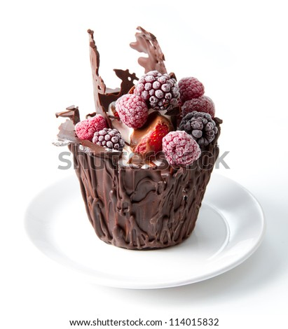 chocolate and forest fruit dessert