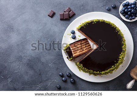 Chocolate cake on a plate. Grey stone background. Copy space. Top view.