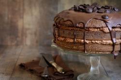 Chocolate cake with mascarpone on rustic background.