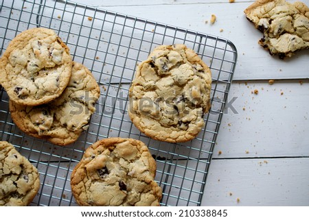 Chocolate Chip Cookies Fresh from Oven
