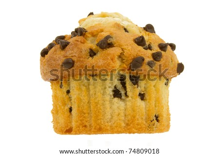 Chocolate Chip Muffin Isolated on a White Background