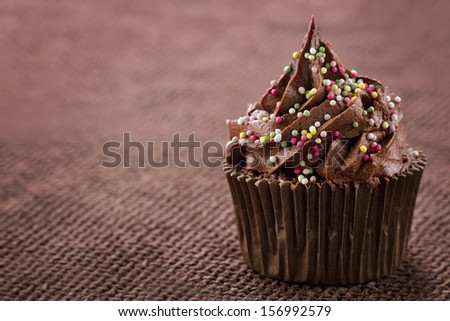 Chocolate cupcake with colorful sprinkles on dark background and copy space