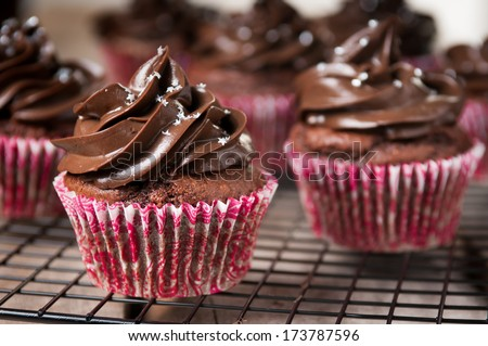 Chocolate Cupcakes on Cooling Rack #173787596